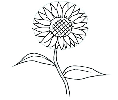 how-to-draw-flowers