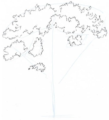 how to draw trees